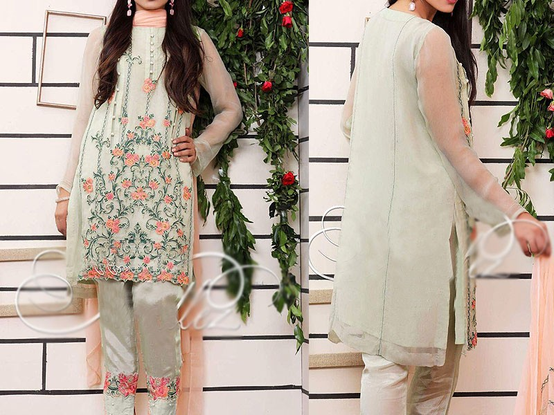 Elegant Embroidered Mint Green Net Dress Price in Pakistan