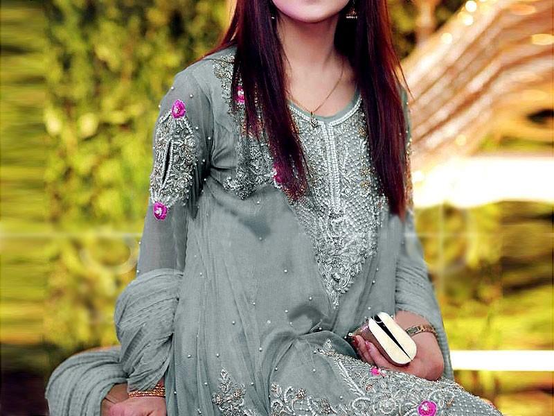 Designer Embroidered Net Dress