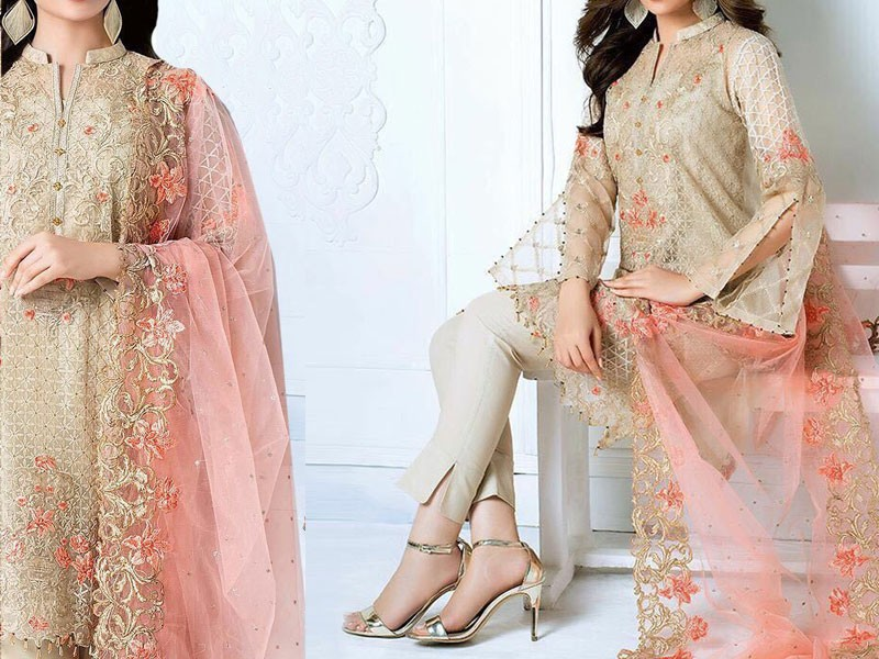 Heavy Embroidered Skin Net Dress Price in Pakistan