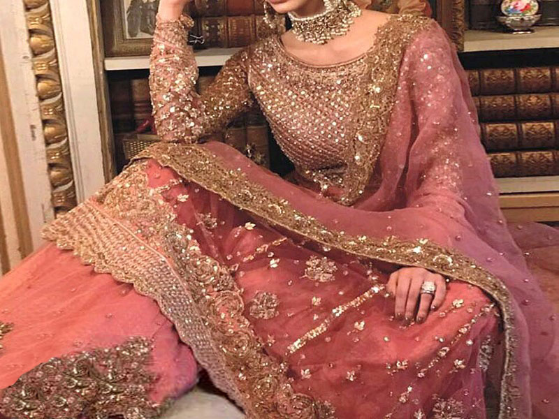 Hand Work Embroidered Net Bridal Dress Price in Pakistan