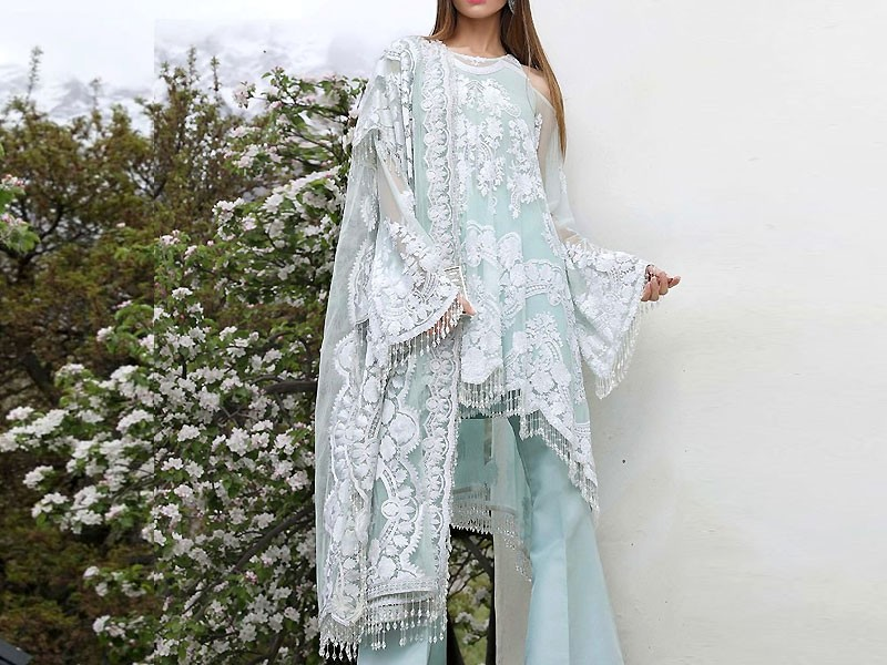 Embroidered Net Wedding Dress with Silk Trouser Price in Pakistan