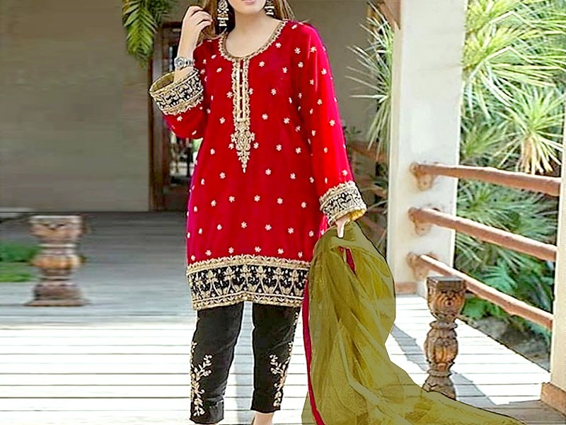 Heavy Embroidered Cotton Party Wear Dress