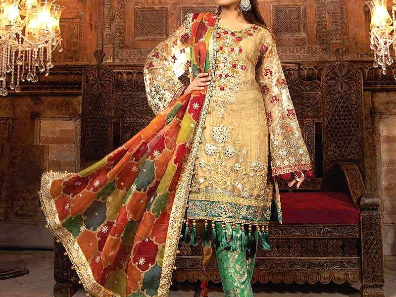 Heavy Embroidered Net Wedding Dress with Organza Net Dupatta