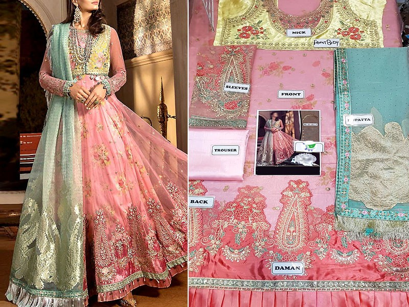 Luxury Embroidered Net Dress with Organza Dupatta
