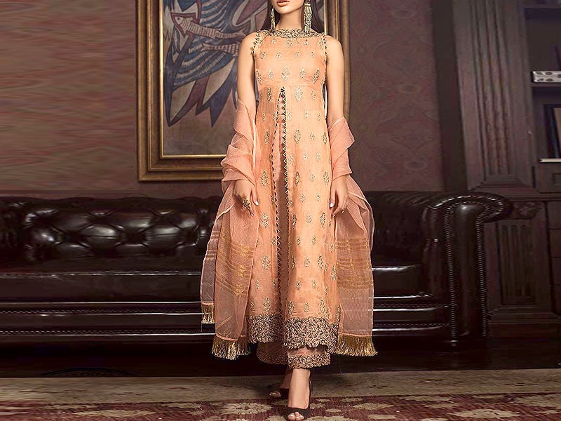 Embroidered Organza Wedding Dress Price in Pakistan