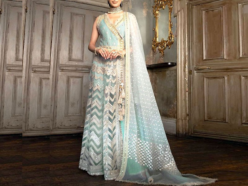Heavy Embroidered Net Maxi Dress Price in Pakistan