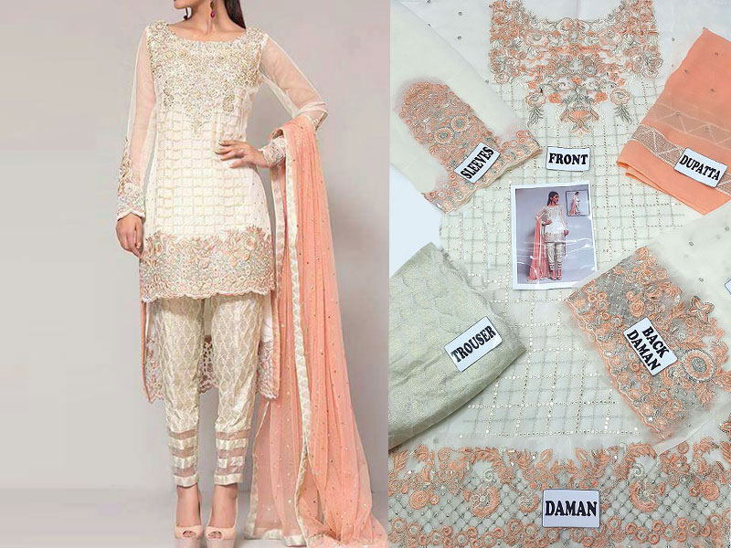 Designer Chiffon Embroidered Suit