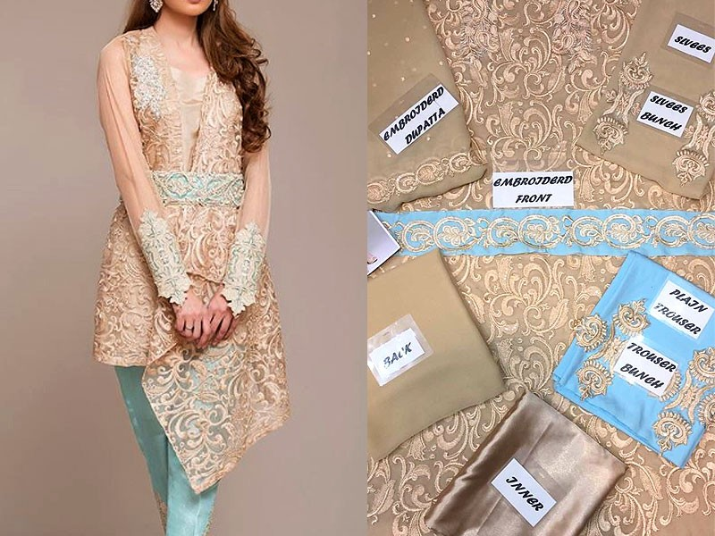 Chiffon Embroidered Dress Price in Pakistan