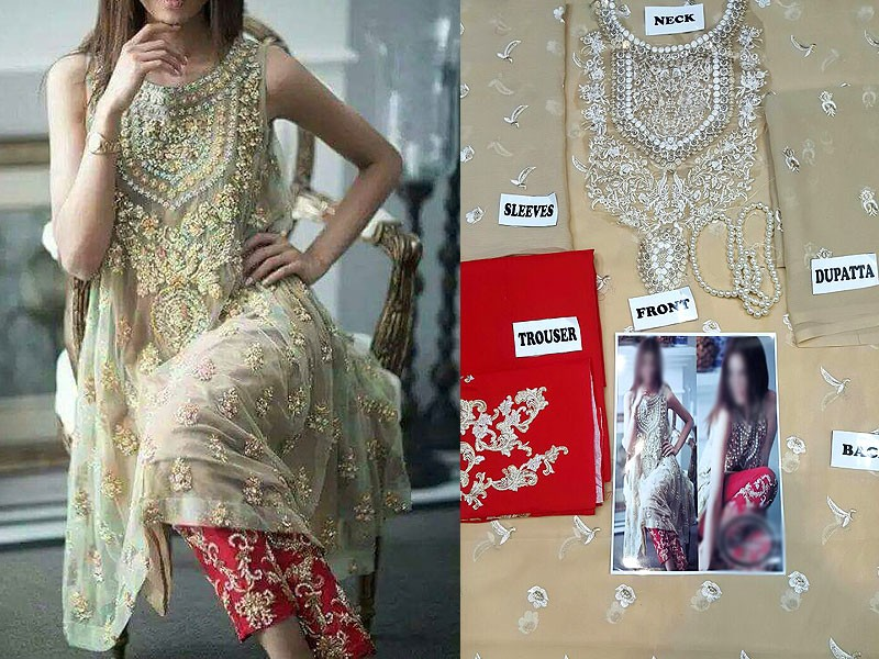Embroidered Skin Chiffon Dress with Mala Price in Pakistan