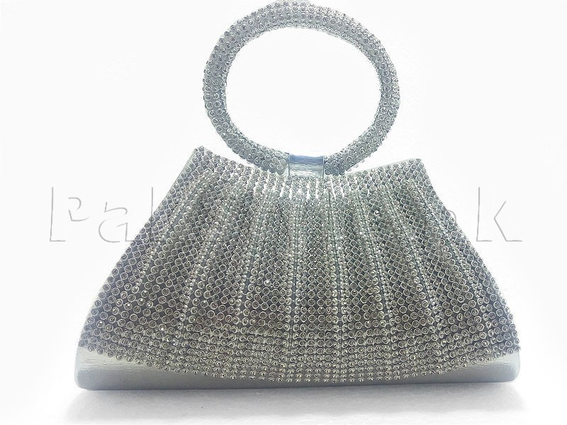 Fancy Silver Clutch Purse