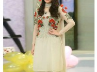 Embroidered Skin Color Net Dress in Pakistan