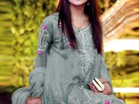 Designer Embroidered Net Dress Price in Pakistan