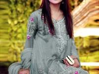 Designer Embroidered Net Dress in Pakistan