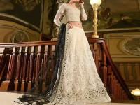 Embroidered Skin Net Bridal Lehenga in Pakistan