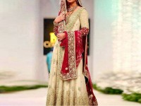Embroidered Skin Net Bridal Dress in Pakistan