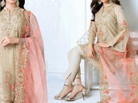 Heavy Embroidered Skin Net Dress in Pakistan
