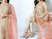 Heavy Embroidered Skin Net Dress in Pakistan
