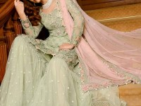 Embroidered Chiffon Dress with Net Palazzo Trouser in Pakistan