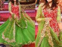 Embroidered Net Bridal Lehenga Dress in Pakistan