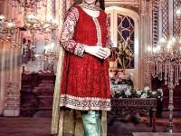 Embroidered Chiffon Dress with Net Dupatta in Pakistan