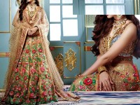 Embroidered Skin Net Lehenga Dress in Pakistan