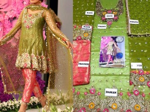 Embroidered Net Bridal Dress with Jamawar Trouser in Pakistan