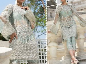 Handwork Embroidered Net Party Dress Price in Pakistan