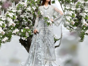 Embroidered Net Party Dress Price in Pakistan
