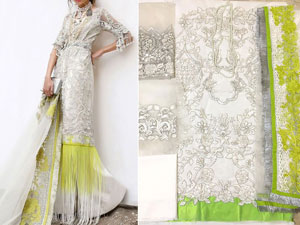 Heavy Embroidered Net Party Dress with Embroidered Net Dupatta Price in Pakistan