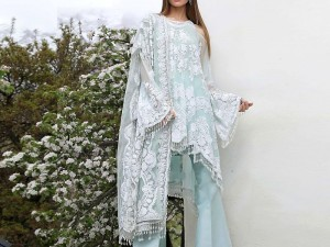 Embroidered Net Wedding Dress Price in Pakistan