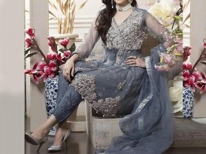Embroidered Grey Net Dress with Silk Trouser Price in Pakistan
