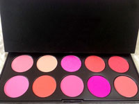 High Quality 10 Color Blush On Kit Price in Pakistan