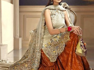 Heavy Embroidered Net Bridal Dress with Inner Price in Pakistan