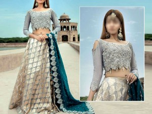 Luxury Embroidered Chiffon Bridal Dress with Organza Lehenga Price in Pakistan
