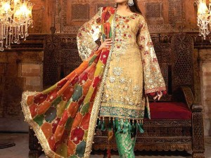 Heavy Embroidered Net Wedding Dress with Organza Net Dupatta Price in Pakistan