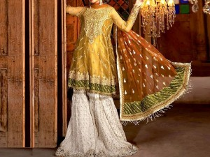 Embroidered Organza Party Dress with Net Dupatta Price in Pakistan