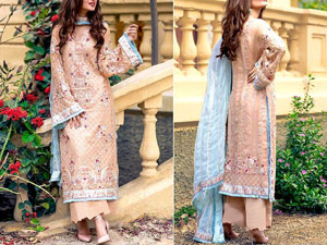 Heavy Embroidered Chiffon Party Dress with Embroidered Chiffon Dupatta Price in Pakistan