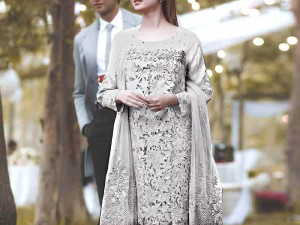 Heavy Embroidered Grey Net Dress with Inner Price in Pakistan