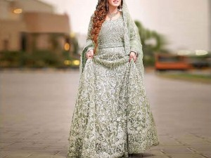 Luxury Embroidered Handwork Net Bridal Maxi Dress Price in Pakistan