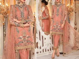 Heavy Embroidered Net Wedding Dress with Inner Price in Pakistan