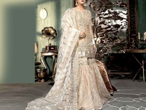 Mirror Work Heavy Embroidered Net Lehenga Dress