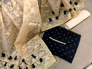 Embroidered Black Banarsi Dress with Organza Jacquard Dupatta Price in Pakistan