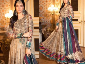 Heavy Embroidered Net Maxi Dress 2021 with Chiffon Dupatta Price in Pakistan
