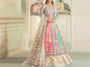 Handwork Heavy Embroidered Organza Bridal Maxi Dress Price in Pakistan