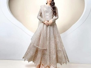 Handwork Heavy Embroidered Net Maxi Dress Price in Pakistan