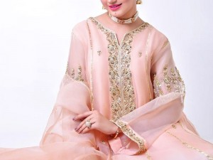 Handwork Embroidered Organza Party Dress with Inner Price in Pakistan
