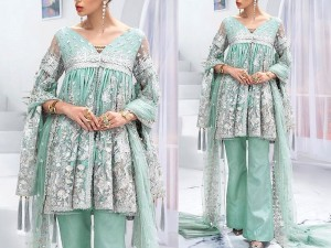 Heavy Embroidered Net Wedding Dress with Silk Trouser Price in Pakistan