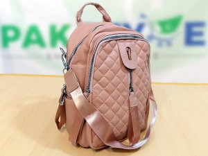 Trendy Tea Pink Backpack for Girls Price in Pakistan