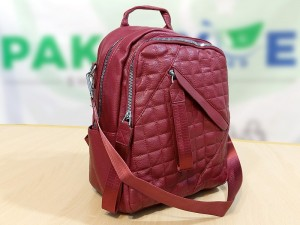 Trendy Maroon Backpack for Girls Price in Pakistan