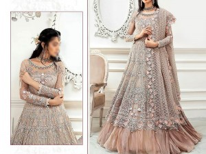 Handwork Heavy Embroidered Bridal Net Maxi Dress 2021 Price in Pakistan